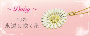 Daisy GJの永遠に咲く花