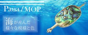 Paua / MOP 海が産んだ様々な模様と色